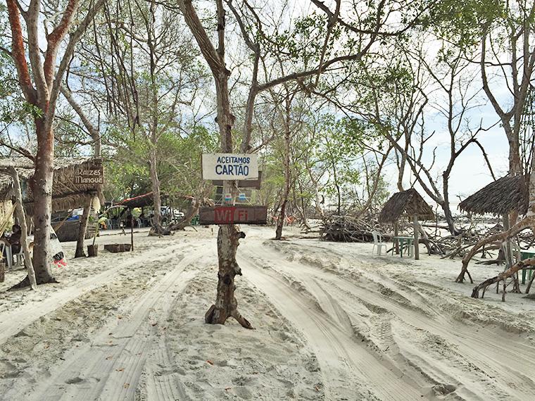 wi-fi no manguezal